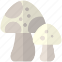 fungi, fungus, mushroom, mushrooms icon
