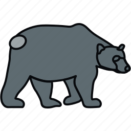animal, animals, bear, forest, nature, wild icon