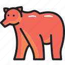 animal, bear, forest, wildlife icon