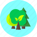 forest, plant, tree, park, trees, green, forrst