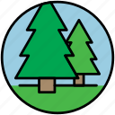 christmas tree, forest, pine, pine tree, spruce, trees, wood icon