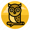 bird, education, halloween, knowledge, night, owl, scary icon