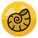 beach, ocean, sea, shell, shellfish, summer, vacation icon
