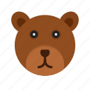 brown, head, polar, bears, tree, wildlife, bear
