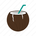 coconut, drink, food, freshness, fruit, nature, table icon