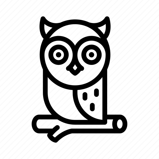 animal, bird, education, halloween, knowledge, nature, owl icon