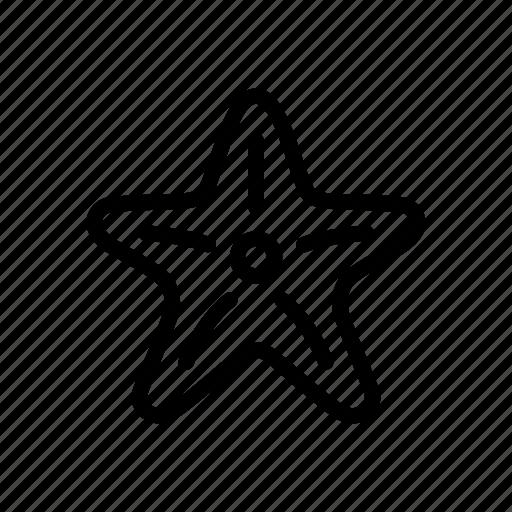 asteroid, five-finger, ocean, sea, sea star, star, starfish icon