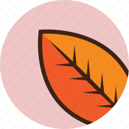 autumn, camping, fall, leaf icon