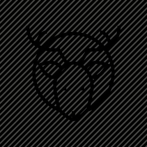 antlers, deer, hunt, hunting, hunting trophy icon