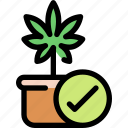cannabis, health, pot, leaf, law, marijuana icon