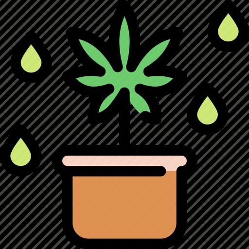 cannabis, marijuana, pot, tree icon