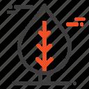 canada, leaf, plant