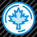 autumn, canada, leaf, maple icon