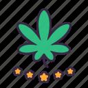 cannabis, marijuana, plant, leaves, drug, grade, premium