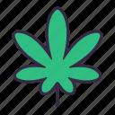 cannabis, marijuana, plant, leaves, drug, kush, weed