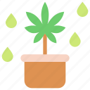 cannabis, cook, cooking, drink, kitchen, marijuana, pot icon