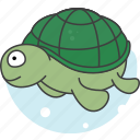 animals, aquatic creatures, cartoon, cartoon turtletortoise, river, sea, turtletortoise icon
