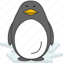 animals, aquatic creatures, cartoon, penguin, sea icon