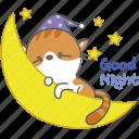 cartoon, cat, character, good, kitten, kitty, night