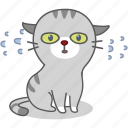 cartoon, cat, character, emoji, emoticon, kitty, nervous icon