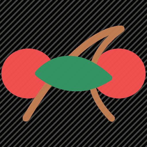 cherry, diet, food, fruit, nutrition, wild cherry icon