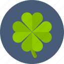 casino, clover, four leaf clover, leaf, poker, slot