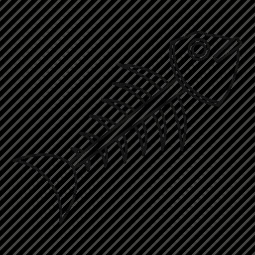 bone, dead, fish, line, outline, sea, skeleton icon
