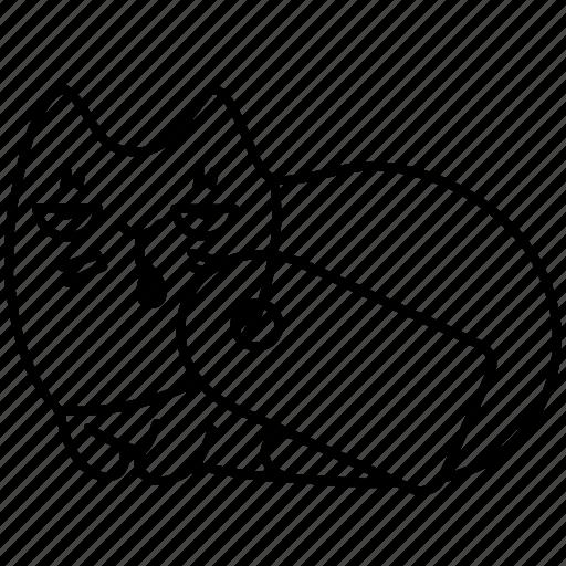 animal, buy, cat, pet, price, shop, tag icon