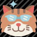 animal, cat, cool, emoji, emotion, feeling, smart