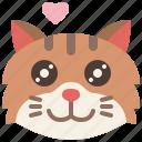 animal, cat, cute, emoji, emotion, feeling, pet