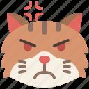 angry, animal, cat, emoji, emotion, feeling, pet