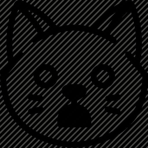 cat, emoji, emotion, expression, face, feeling, shocked icon