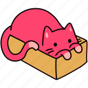 animal, box, cat, cozy, feline, hide, pet icon
