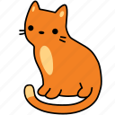 animal, cat, feline, ginger, orange, pet, sit