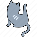 animal, back, cat, clean, feline, leg, pet icon