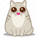 animal, cat, eyes, pet, pity, please, sorry icon