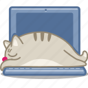 cat, computer, display, laptop, pet, sleep, snooze icon