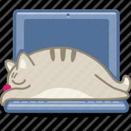 cat, computer, display, laptop, pet, sleep, snooze icon
