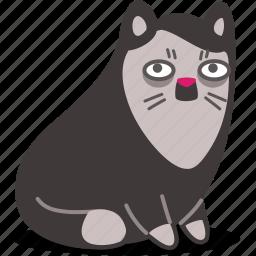 cat, hitler, kitty, moustache, pet icon