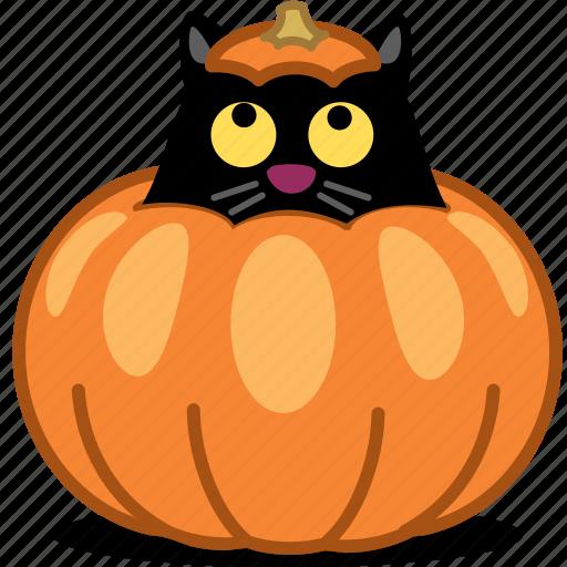 animal, cat, halloween, hide, jack o lantern, kitty, pet, pumpkin, spooky icon