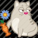 cat, flower, pet, vase