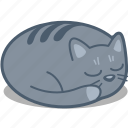 animal, cat, catnap, nap, night, pet, sleep icon
