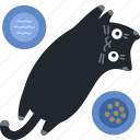 cat, deal, discount, eat, food, kitchen, percent icon