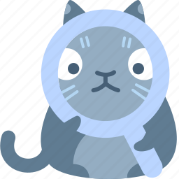 cat, find, glass, magnify, search, view, zoom icon