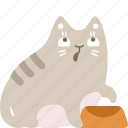 cat, food, hungry, pet icon
