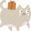 carry, cat, deliver, delivery, gift, package, shipping icon