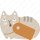 cat, label, pet, price, tag icon