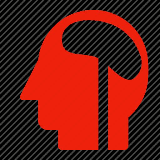 brain, category, head, mind icon