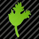 celery, food, ingredient, leaf, nature, retro