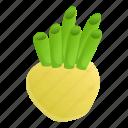 celery, food, fruit, garden, leaf, nature icon